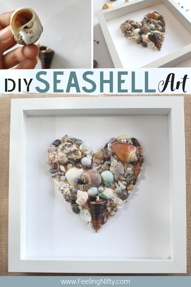 seashell art diy easy