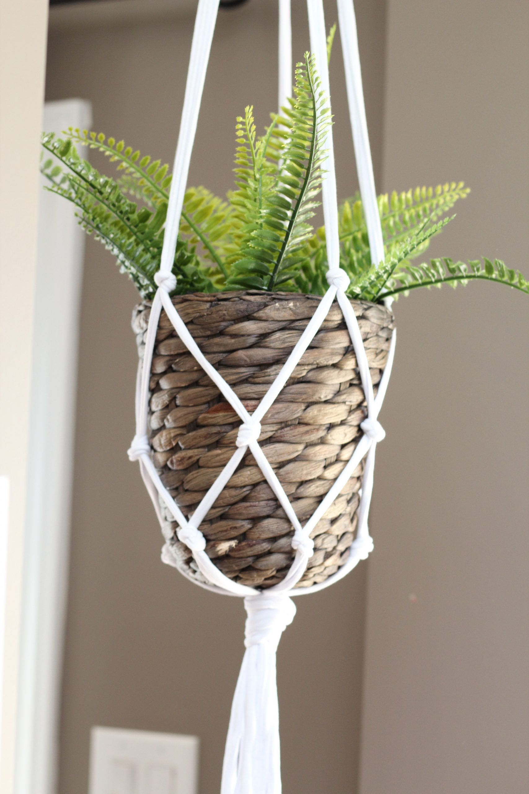 5 minute DIY macrame hanging planter