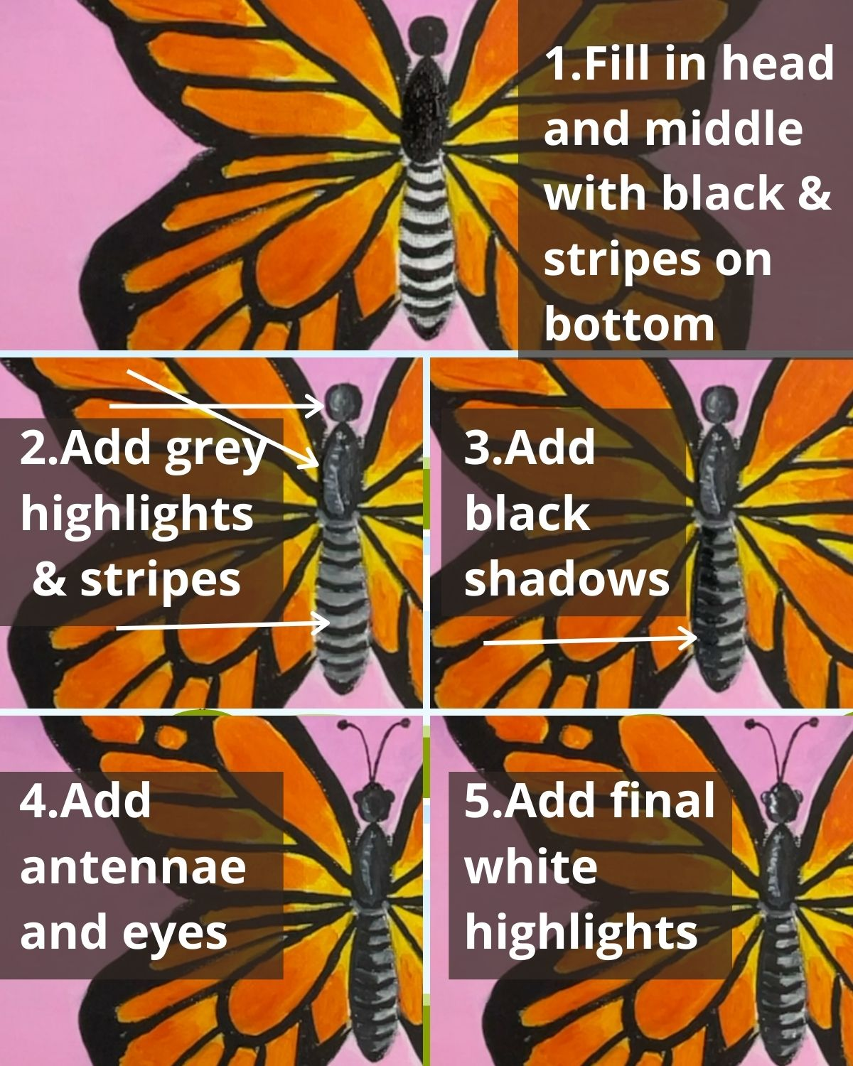 how to paint butterfly realistic body closeup